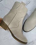 Ботинки женские зимние на устойчивом каблуке из натуральной замши от производителя модель НИ304-6-6, фото 2