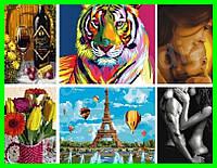 Картины по номерам Идейка Brushme ArtStory Babylon Mariposa 40х50 50х65