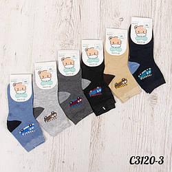 Шкарпетки дитячі для хлопчика 31-36 Корона C3120-3