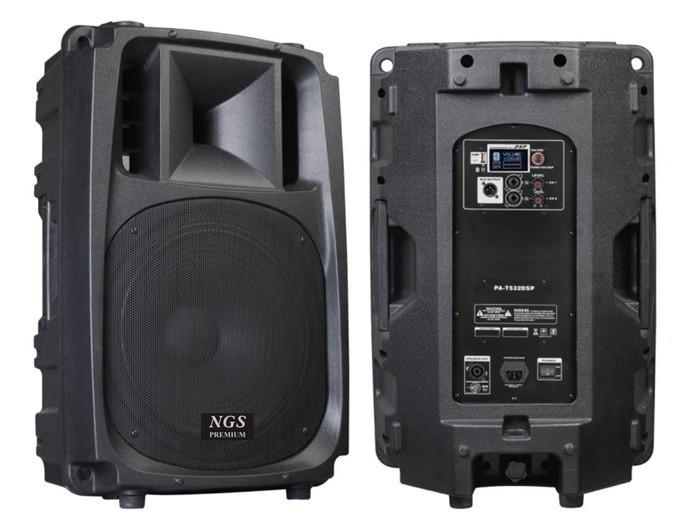 Купить Активная акустическая система NGS Premium PA-T532RDSP-2 15 , 450Вт + радиомикрофоны