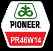 Ріпак ПР46В14 (2015 р)