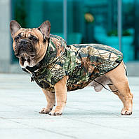 Одежда для собак,  дождевик+флис  для мопса, для французского бульдога.  Sunny Mood лес