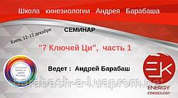 12 - 15 декабря Киев Обучающий семинар. 7 Chi Keys часть №1