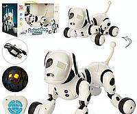 Собака робот DIMEI 9007A интерактивная игрушка для дете на радиоуправлении Аккумулятор,музыка, звуки,светится