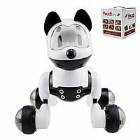 Собака робот интерактивная игрушка MG010 Dog Smart Robot для детей с голосовым управлением Свободный Режим
