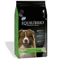 Сухой корм Equilibrio (Эквилибрио) Adult Medium Breeds для взрослых собак средних пород (курица) 15 кг