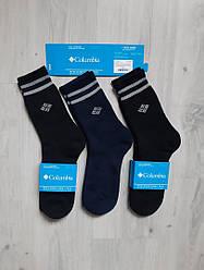Мужские термоноски коламбия хлопок черные теплые премиум комфорт р.41-46 Thermal Socks Columbia Black
