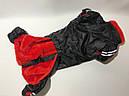 Комбинезон на меху 36 см разм Такса маленькая черный для собак, фото 2