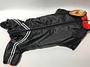 Комбинезон на меху 36 см разм Такса маленькая черный для собак, фото 3