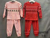 Пижама с микроначесом для девочек оптом, Setty Koop, 1-5 лет,  № PJM055