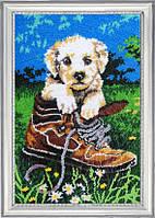 Набор для вышивания бисером Шаловливый щенок БФ 611