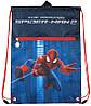 Сумка для обуви и спортивной формы  601 Spider‑Man‑1