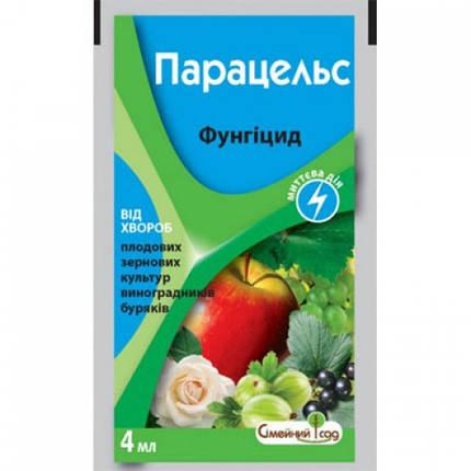 Фунгицид Парацельс (4 мл) — защита и лечение от болезней винограда, плодово-ягодных, сахарной свеклы, фото 2