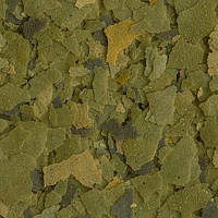 Tetra Phyll (10 л/ 2,05 кг)