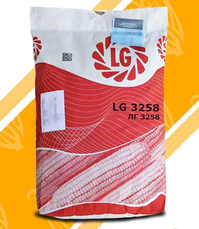 Семена кукурузы ЛГ 3258 Импорт