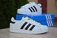 Кроссовки Adidas Superstar женские, белые с черным, в стиле Адидас Суперстар, натуральная кожа, код OD-2853