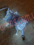 Светодиодная гирлянда (10m-1 white), фото 3
