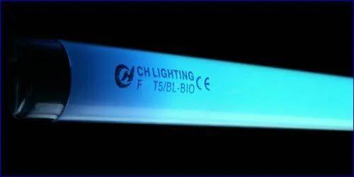 Люминесцентная лампа SunSun Т5 24W 550 мм Blue-Lux coral (голубая)