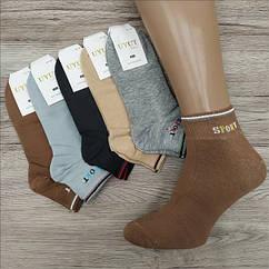 Носки мужские средние деми UYUT men cotton socks хлопок 41-47р.бесшовные с двойной пяткой ассорти НМД-0510361