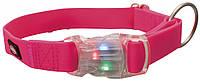 Ошейник светящийся с USB (розовый), фото 1