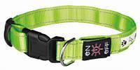 Ошейник светящийся с USB (зеленый), фото 1