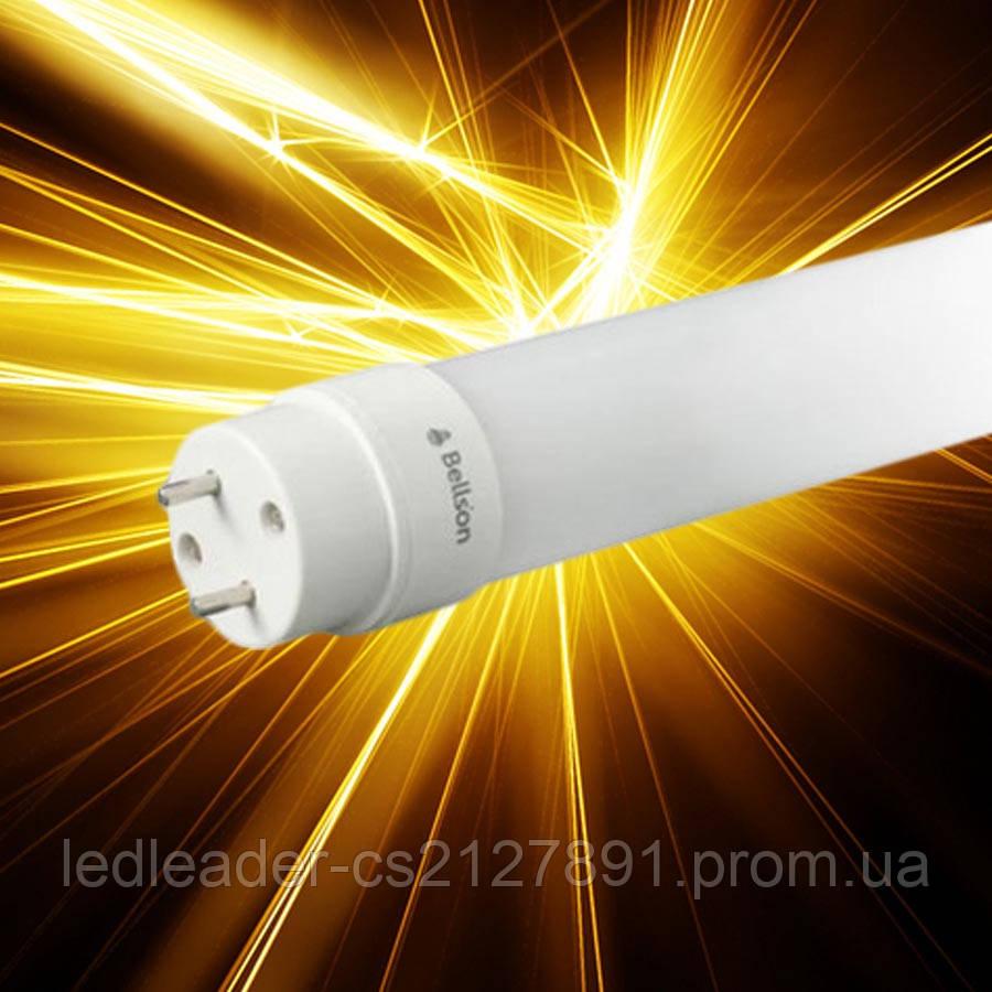 Светодиодная лампа Bellson BL-G13/10W-900/40/glass - Ledleader в Харькове