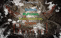 Поступление: BioTech, MyProtein, Scitec Nutrition, Syntrax.