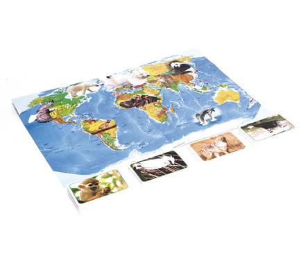 Игра. Развивающие карточки для детей. Тварини дикого світу (Животные дикого мира) 655 Strateg, фото 2