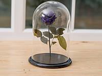Роза в стеклянной колбе Фиолетовый аметист. Persona