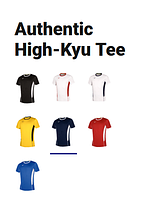 Волейбольная футболка Mizuno Authentic High-Kyu Tee (V2EA7001-45), фото 2