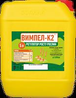 Препарат для оброботки семян Вымпел К2 (канистра 5л)