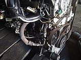 Насос гидроусилителя руля Nissan X-Trail T30 Primera P12 2,0 2,5 бензин , фото 3