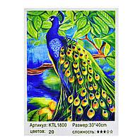 Картина по номерам Павлин на дереве 20 цветов полная