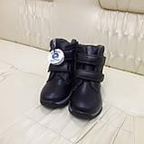Зимние сапожки детские из натуральной кожи на цегейке размеры 28 сапожки, ботинки, фото 4