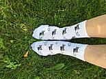 Консервированные Носочки Шальной Императрицы - Оригинальный Подарок Веселой Девушке, фото 4