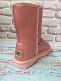 Классические кожаные розовые угги Ugg реплика, фото 4