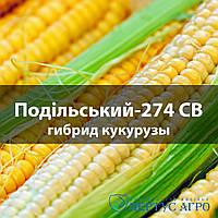 Подольский 274 СВ (Подільський) гибрид кукурузы