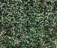 """Декоративное зеленое покрытие """"Бостон Плющ"""""""