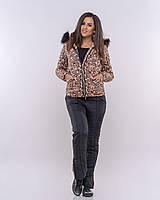Тёплый зимний женский костюм черный + леопард  стильный с капюшоном на молнии с холофайбером и мехом