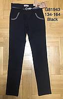 Котоновые брюки для девочек Grace оптом , 134-164 рр., фото 1