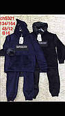Велюровый костюм-двойка для мальчиков S&D оптом, 134-164 рр.