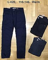 Котоновые брюки на флисе для мальчиков Glass Bear оптом,116-146 рр. Артикул: L026, фото 1