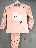 Пижама для девочек Setty Koop оптом, 1-5 лет. Артикул: PJM037