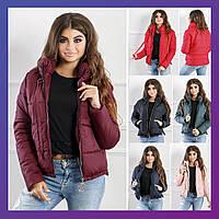 Женская зимняя короткая куртка черная синяя пудра красная бутылка бордо 42-44 44-46 46-48, фото 1