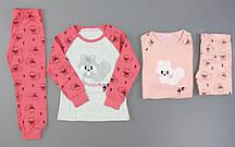 Пижама для девочек Setty Koop, 1-5 лет. Артикул: PJM037 {есть:1 год,4 года}