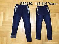 Лосины на меху для девочек оптом, Grace, 116-146 см,  № G80430, фото 1