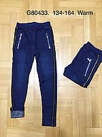 Лосины на меху для девочек оптом, Grace, 134-164 см,  № G80433, фото 1