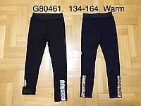 Лосины на меху для девочек оптом, Grace, 134-164 см,  № G80461, фото 1