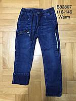 Джинсы утепленные для мальчиков оптом, Grace, 116-146 см,  № B82807, фото 1