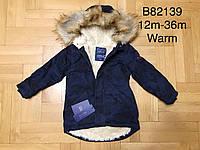 Куртка на меху для мальчиков оптом, Grace, 12-36 мес.,  № B82139